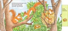 Who's Hiding Here? Find the Forest Animals - image 12 - Click to Zoom