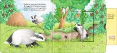 Who's Hiding Here? Find the Forest Animals - image 13 - Click to Zoom