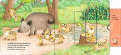 Who's Hiding Here? Find the Forest Animals - image 15 - Click to Zoom
