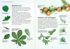 Mein Natur-Erlebnisbuch Bücher;Kindersachbücher - Bild 3 - Ravensburger