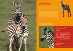 Wilde Tierkinder - Bild 3 - Klicken zum Vergößern