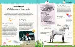 Wunderbare Welt der Pferde und Ponys - Bild 5 - Klicken zum Vergößern