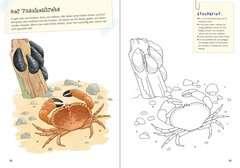 Mein großes Natur-Malbuch Malen und Basteln;Bastel- und Malbücher - Bild 4 - Ravensburger