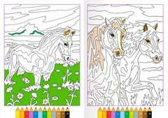 Malen nach Zahlen: Pferde - Bild 4 - Klicken zum Vergößern