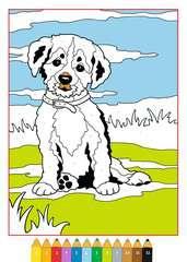 Malen nach Zahlen: Tierkinder - Bild 3 - Klicken zum Vergößern