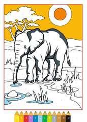 Malen nach Zahlen: Tierkinder - Bild 4 - Klicken zum Vergößern