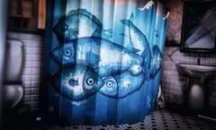Escape the Room 3 - Das verfluchte Puppenhaus - Bild 19 - Klicken zum Vergößern