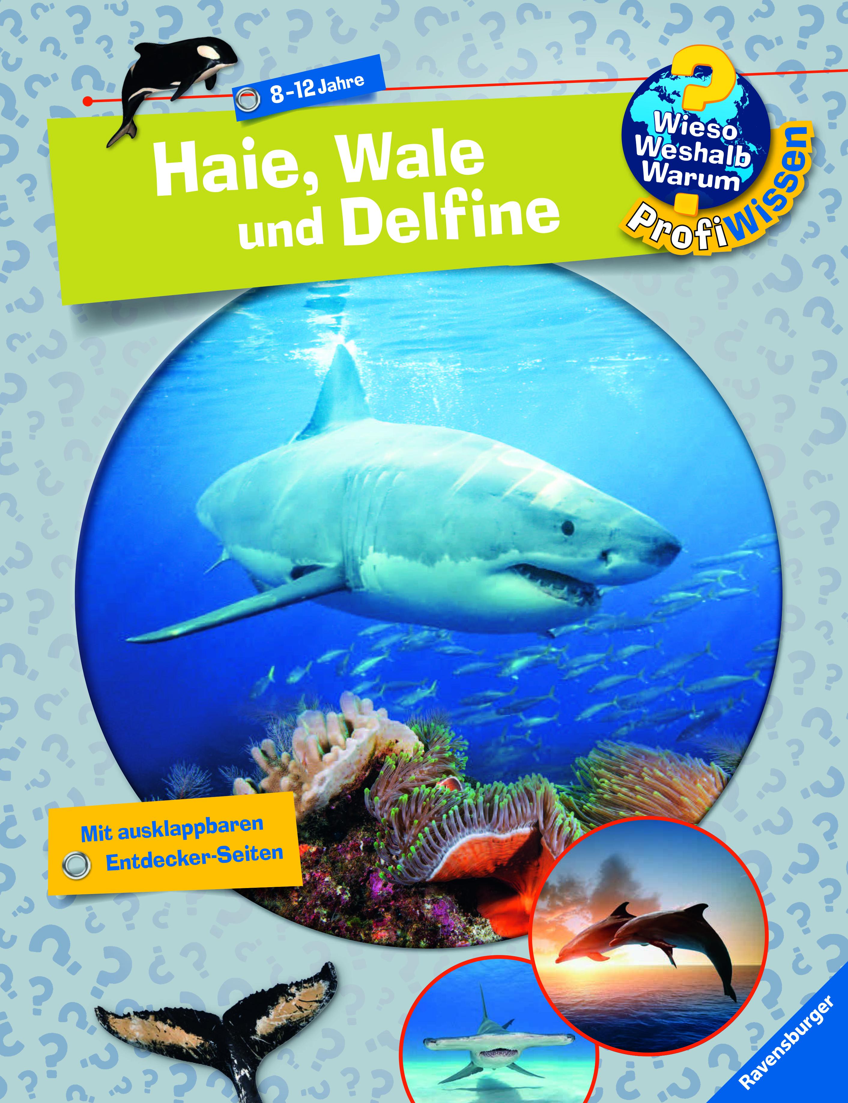 Haie, Wale und Delfine | Wieso? Weshalb? Warum? | Kinderbücher ...