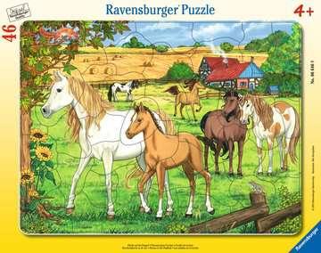 Puzzle cadre 30-48 p - Chevaux dans l enclos Puzzle;Puzzle enfant - Image 1 - Ravensburger