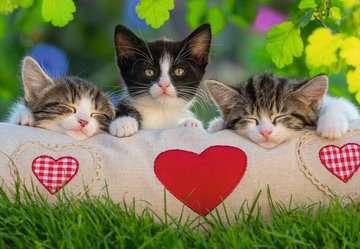 Sleepy Kittens Puslespil;Puslespil for børn - Billede 2 - Ravensburger