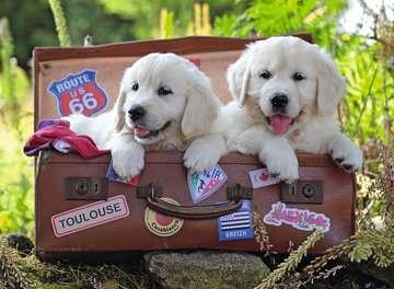 Traveling Pups 100pc Puslespil;Puslespil for børn - Billede 2 - Ravensburger