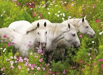 Pferde auf der Blumenwiese Puzzle;Kinderpuzzle - Bild 2 - Ravensburger