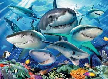 Smiling Sharks Jigsaw Puzzles;Children s Puzzles - image 3 - Ravensburger