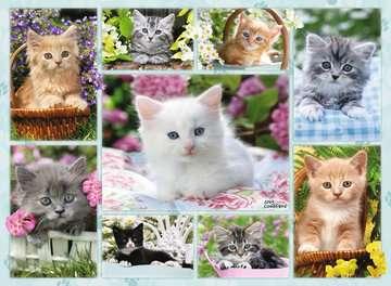 Kitten in a Basket, 500pc Puslespil;Puslespil for voksne - Billede 2 - Ravensburger