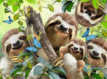 Sloth Selfie, 500pc Puslespil;Puslespil for voksne - Billede 2 - Ravensburger