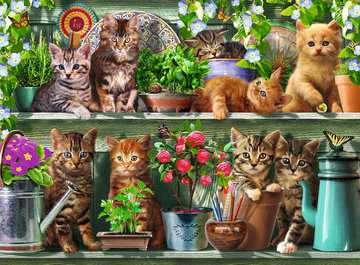 Cats on the Shelf, 500pc Puslespil;Puslespil for voksne - Billede 2 - Ravensburger
