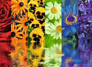 Floral Reflections Jigsaw Puzzles;Adult Puzzles - image 2 - Ravensburger