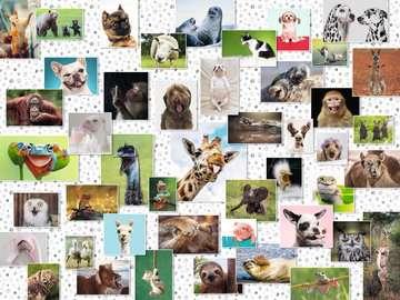 Funny Animals Collage     1500p Puslespil;Puslespil for voksne - Billede 2 - Ravensburger