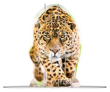 4S Vision Wild Cats Malen und Basteln;Bastelsets - Bild 2 - Ravensburger