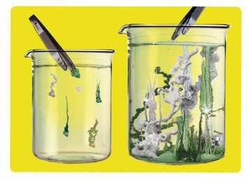 ScienceX® Chemie Laboratorium Hobby;ScienceX® - image 2 - Ravensburger