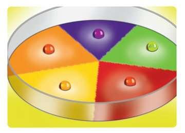ScienceX® Chemie Laboratorium Hobby;ScienceX® - image 4 - Ravensburger