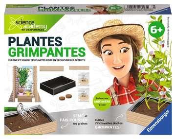 Plantes grimpantes Jeux scientifiques;Biologie - Image 1 - Ravensburger