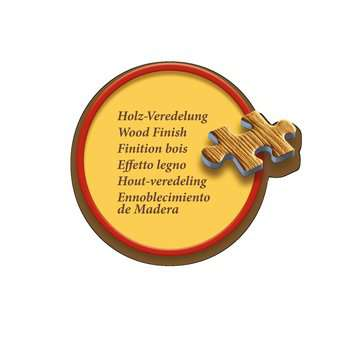 Antike Weltkarte Puzzle;Erwachsenenpuzzle - Bild 4 - Ravensburger