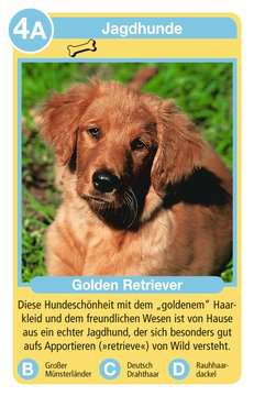 Hunde Spiele;Kartenspiele - Bild 2 - Ravensburger