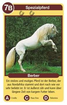 Pferde Spiele;Kartenspiele - Bild 2 - Ravensburger