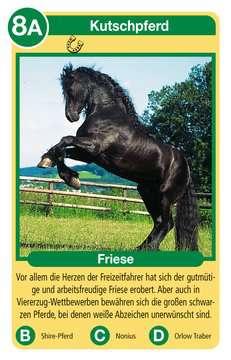 20422 Kartenspiele Pferde von Ravensburger 3