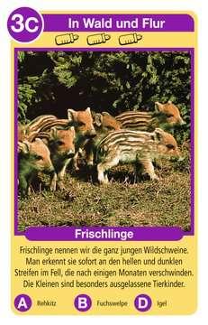 Tierkinder Spiele;Kartenspiele - Bild 2 - Ravensburger