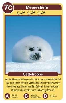 Tierkinder Spiele;Kartenspiele - Bild 3 - Ravensburger