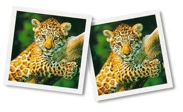 23013 Mitbringspiele Tierbaby memory® von Ravensburger 3