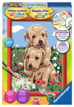 Knuffelende puppies Hobby;Schilderen op nummer - image 1 - Ravensburger