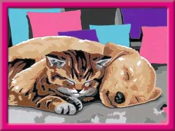 Slapende vrienden Hobby;Schilderen op nummer - image 2 - Ravensburger