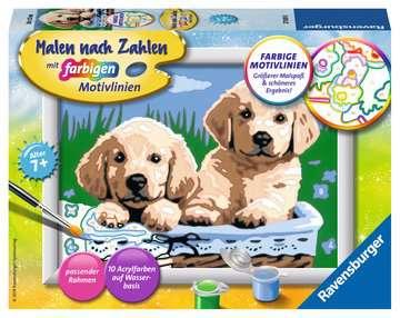 27839 Malen nach Zahlen Süße Hundewelpen von Ravensburger 1