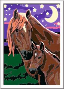 27844 Malen nach Zahlen Pferde von Ravensburger 2