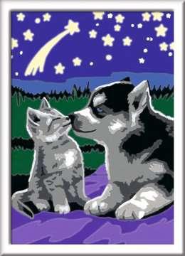 27847 Malen nach Zahlen Hund und Katze von Ravensburger 2