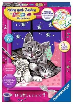 27995 Malen nach Zahlen Schlafende Katzen von Ravensburger 1