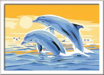 Springende dolfijn Hobby;Schilderen op nummer - image 2 - Ravensburger