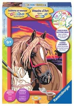 Droompaard Hobby;Schilderen op nummer - image 1 - Ravensburger