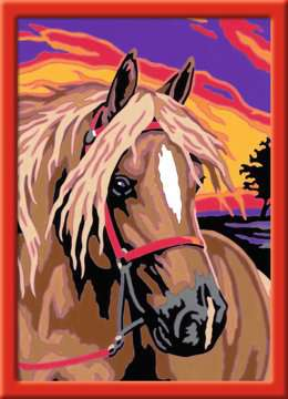 Droompaard Hobby;Schilderen op nummer - image 2 - Ravensburger