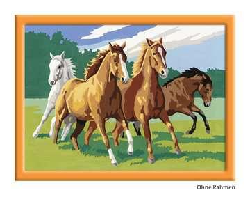 Wilde paarden / Chevaux sauvages Loisirs créatifs;Peinture - Numéro d art - Image 4 - Ravensburger