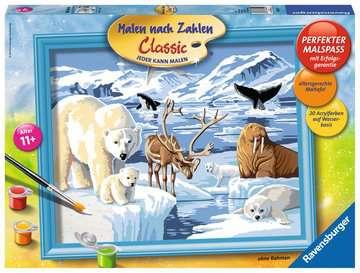 Dieren op Antartica Hobby;Schilderen op nummer - image 1 - Ravensburger