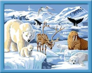Dieren op Antartica / L´Antarctique Loisirs créatifs;Peinture - Numéro d art - Image 2 - Ravensburger