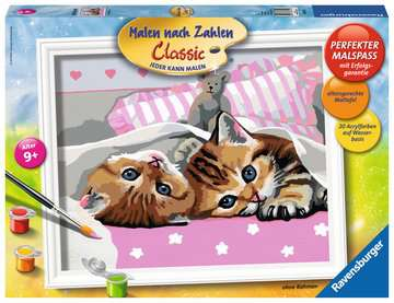 Schattige katjes Hobby;Schilderen op nummer - image 1 - Ravensburger