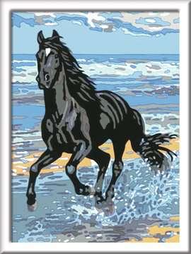 28565 Malen nach Zahlen Pferd am Strand von Ravensburger 2