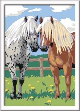 28566 Malen nach Zahlen Glückliche Pferde von Ravensburger 2