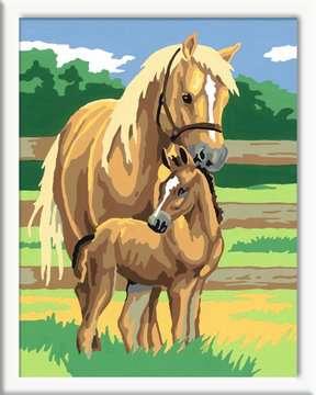 Paardenliefde Hobby;Schilderen op nummer - image 2 - Ravensburger