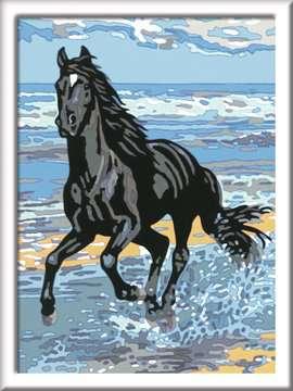 Paard in de branding Hobby;Schilderen op nummer - image 2 - Ravensburger